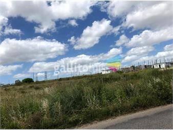 https://www.gallito.com.uy/venta-gran-terreno-en-sayago-norte-inmuebles-18687861