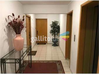 https://www.gallito.com.uy/hermoso-apartamento-en-cordon-inmuebles-18713796