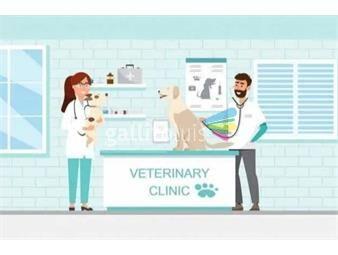 https://www.gallito.com.uy/venta-de-llave-o-propiedad-veterinaria-maroñas-inmuebles-18714106