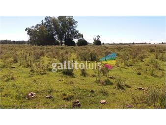 https://www.gallito.com.uy/campo-de-20-has-con-2-casas-y-galpones-inmuebles-18500407
