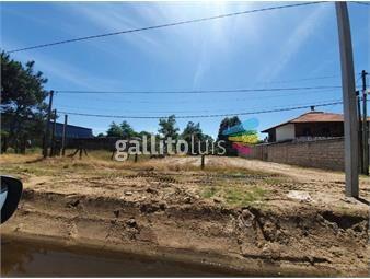 https://www.gallito.com.uy/terreno-nivelado-15-metros-de-frente-inmuebles-18717250