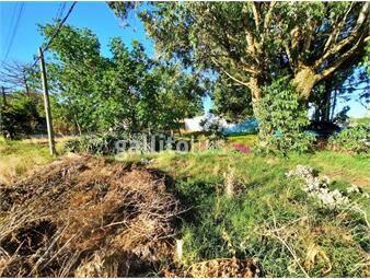 https://www.gallito.com.uy/venta-terreno-esquina-en-solymar-inmuebles-18751054