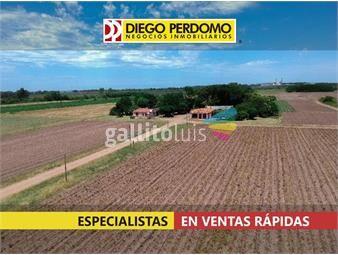 https://www.gallito.com.uy/campo-de-26-has-en-venta-colonia-wilson-inmuebles-18759274