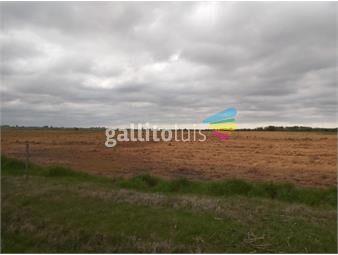 https://www.gallito.com.uy/canelones-campo-de-137-has-agricolas-inmuebles-18769832