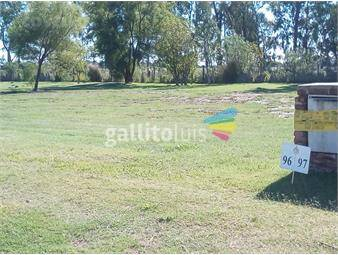 https://www.gallito.com.uy/terreno-barrio-abierto-cercano-a-sheraton-en-zona-real-de-inmuebles-16760832