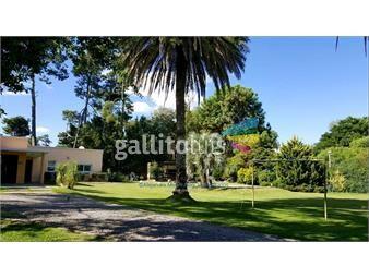 https://www.gallito.com.uy/4-dormitorios-mas-esc-mas-piscina-el-pinar-inmuebles-15790991