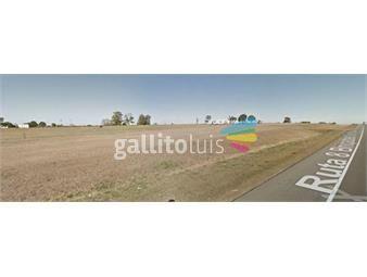 https://www.gallito.com.uy/terreno-venta-ruta-8-km-41-con-30000m-y-380m-fte-inmuebles-14346608