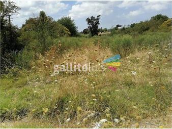 https://www.gallito.com.uy/proximo-aerosur-entre-shopping-e-inter-2000-m2-terreno-inmuebles-18894361
