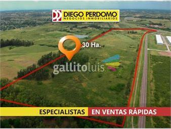 https://www.gallito.com.uy/lote-de-300095-m²-en-venta-canelones-inmuebles-18895117