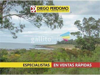 https://www.gallito.com.uy/chacra-de-124-has-en-venta-montevideo-inmuebles-18525255