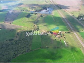 https://www.gallito.com.uy/excepcional-campo-de-153-hectareas-ubicacion-privilegiada-inmuebles-12400021