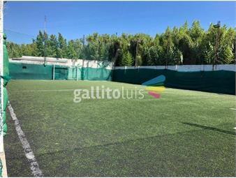 https://www.gallito.com.uy/oportunidad-cancha-de-futbol-5-instalaciones-gran-terreno-inmuebles-18983797