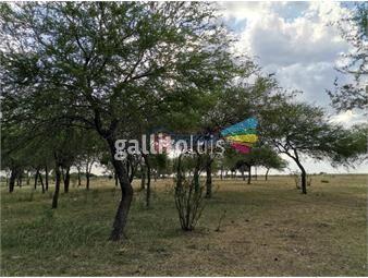 https://www.gallito.com.uy/vende-campo-50-hectareas-con-casa-y-galpon-costa-arroyo-inmuebles-19019002