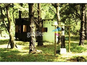 https://www.gallito.com.uy/cabaña-en-bosque-en-santa-isabel-de-la-pedrera-inmuebles-19020747