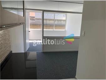 https://www.gallito.com.uy/alquiler-apartamento-a-estrenar-monoambiente-cdad-vieja-inmuebles-19068829
