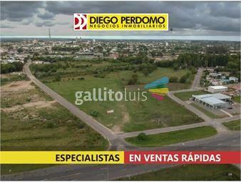 https://www.gallito.com.uy/predio-logistico-10696-m²-en-venta-san-jose-de-mayo-inmuebles-18713883