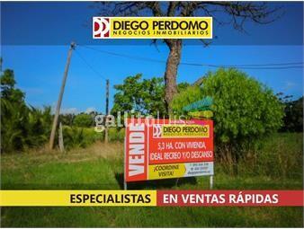 https://www.gallito.com.uy/chacra-de-5-3-has-en-venta-carretera-kiyu-inmuebles-19163429