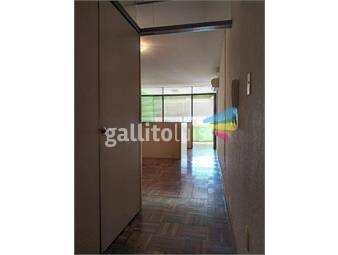 https://www.gallito.com.uy/precioso-monoambiente-en-cordon-inmuebles-19184778