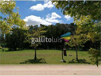 https://www.gallito.com.uy/venta-terreno-barrio-privado-cumbre-de-carrasco-inmuebles-19149692