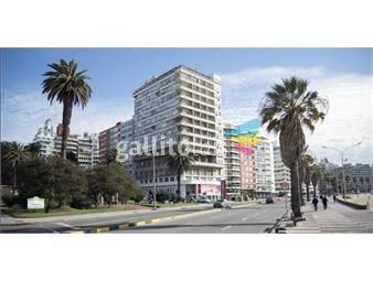 https://www.gallito.com.uy/alquiler-apartamento-monoambiente-pocitos-inmuebles-19192702