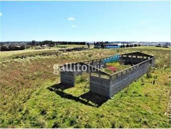 https://www.gallito.com.uy/predio-logistico-ruta-5-las-piedras-inmuebles-19225925