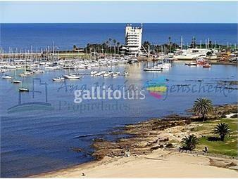 https://www.gallito.com.uy/frente-al-puertito-del-buceo-3-dormitorios-y-serv-garaje-inmuebles-16461152