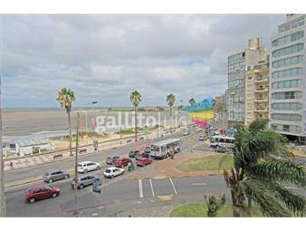 https://www.gallito.com.uy/apartamento-de-2-dormitorios-y-servicio-completo-en-primera-inmuebles-19261663