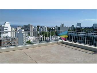 https://www.gallito.com.uy/apartamento-tipo-monoambiente-alquiler-parque-rodo-inmuebles-19284538