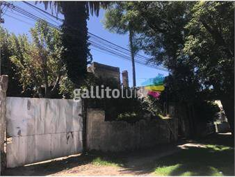 https://www.gallito.com.uy/terreno-venta-17-36-x-50-excelente-inmuebles-19290542