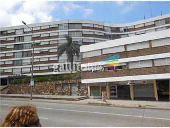 https://www.gallito.com.uy/dueño-vende-muy-lindo-apartamento-inmuebles-19294015