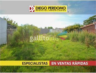 https://www.gallito.com.uy/terreno-468-m²-en-venta-en-san-jose-inmuebles-19309866