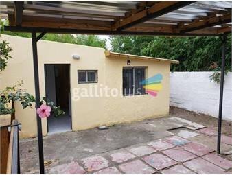 https://www.gallito.com.uy/ml-alquila-monoambiente-sobre-calle-medanos-esquina-ismael-inmuebles-19352855