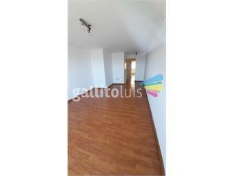 https://www.gallito.com.uy/espectacular-apartamento-1-dormitorio-en-alquiler-punta-inmuebles-19361277