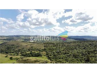 https://www.gallito.com.uy/valle-al-hilo-de-la-vida-32-has-panoramico-inmuebles-19285167