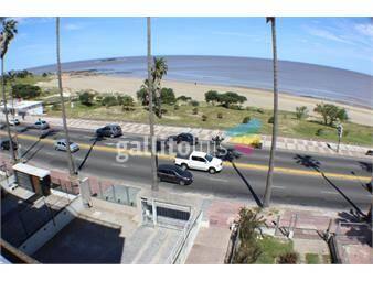 https://www.gallito.com.uy/alquiler-de-apartamento-frente-a-playa-buceo-2-hab-60-m2-inmuebles-19461654