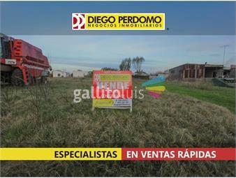 https://www.gallito.com.uy/terreno-de-429m²-en-venta-libertad-inmuebles-19549947