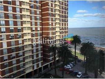 https://www.gallito.com.uy/precioso-en-edificio-muy-seguro-y-con-excelente-ubicacion-inmuebles-19557353