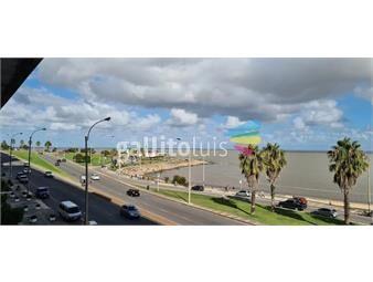 https://www.gallito.com.uy/apartamento-en-alquiler-rambla-republica-del-peru-y-buxareo-inmuebles-19584945