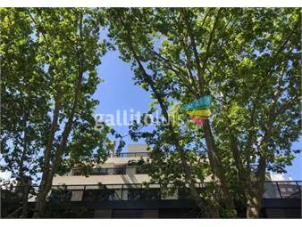 https://www.gallito.com.uy/casi-a-estrenar-moderno-2-dorm-amplia-terraza-2-gges-ind-inmuebles-19589535