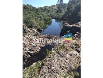 https://www.gallito.com.uy/campo-natural-ganadero-sombra-y-aguada-inmuebles-20232271