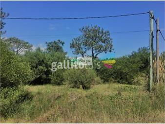 https://www.gallito.com.uy/terreno-en-venta-pinar-sur-inmuebles-19646496