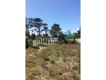 https://www.gallito.com.uy/terreno-en-venta-pinar-sur-inmuebles-19646512