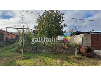 https://www.gallito.com.uy/barrio-san-fernando-excelente-terreno-inmuebles-19713210
