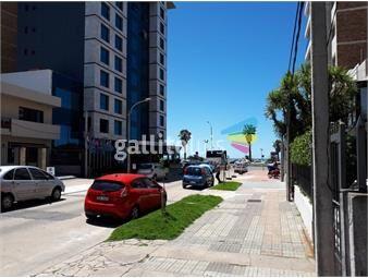 https://www.gallito.com.uy/dueño-vende-amplia-casa-4-dorms-fondo-a-mts-rambla-inmuebles-19723382