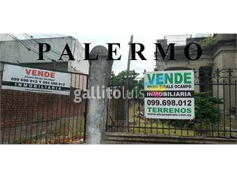 https://www.gallito.com.uy/palermo-11-x-37=-360-m2-alt-1650-mts-galibo-inmuebles-16294141