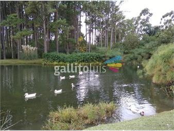 https://www.gallito.com.uy/para-exquisitos-haras-del-lago-barrio-privado-venta-inmuebles-19743969