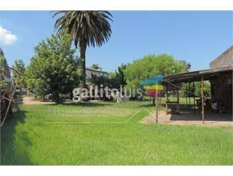 https://www.gallito.com.uy/venta-casa-sayago-gran-terreno-inmuebles-19819379