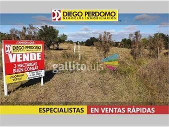 https://www.gallito.com.uy/chacra-de-3-has-proximas-a-ruta-n-1-en-venta-inmuebles-19831236