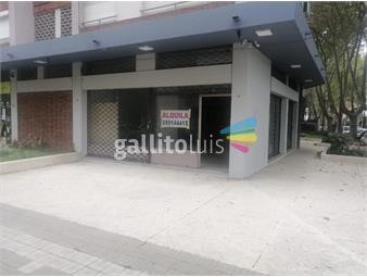 https://www.gallito.com.uy/execelente-ubicacion-proximo-a-8-de-octubre-y-garibaldi-inmuebles-19844784