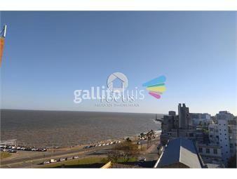 https://www.gallito.com.uy/venta-apartamento-1-dormitorio-terraza-centro-inmuebles-19918335